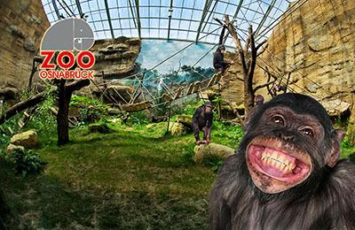 Motiv: Zoo Osnabrück